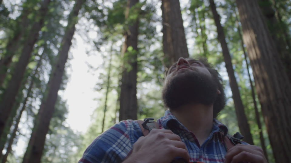 Get 5K premium stock footage video clip - Hiker In The Woods - shot on RED Camera. Available immediately in RED R3D format. Choose from a wide range of footage collections with clips that belong together. One simple license for any use. New collections added weekly. ID 1196. Download footage now!