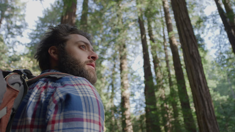 Get 5K premium stock footage video clip - Hiker In The Woods - shot on RED Camera. Available immediately in RED R3D format. Choose from a wide range of footage collections with clips that belong together. One simple license for any use. New collections added weekly. ID 1202. Download footage now!
