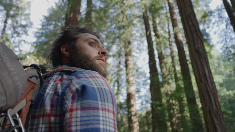 Get 5K premium stock footage video clip - Hiker In The Woods - shot on RED Camera. Available immediately in RED R3D format. Choose from a wide range of footage collections with clips that belong together. One simple license for any use. New collections added weekly. ID 1203. Download footage now!