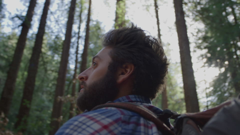 Get 5K premium stock footage video clip - Hiker In The Woods - shot on RED Camera. Available immediately in RED R3D format. Choose from a wide range of footage collections with clips that belong together. One simple license for any use. New collections added weekly. ID 1204. Download footage now!