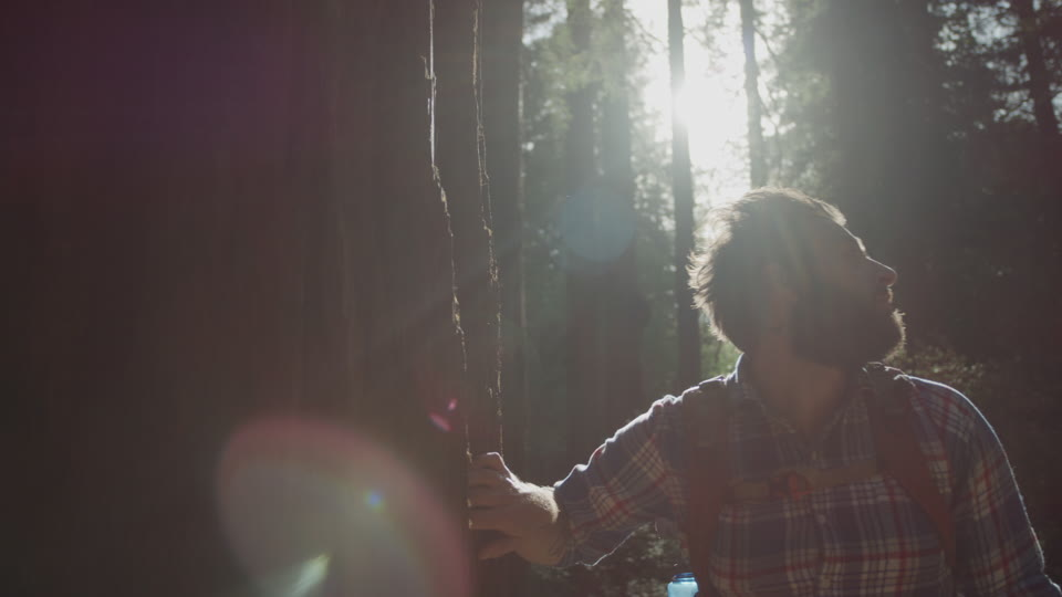 Get 5K premium stock footage video clip - Hiker In The Woods - shot on RED Camera. Available immediately in RED R3D format. Choose from a wide range of footage collections with clips that belong together. One simple license for any use. New collections added weekly. ID 1218. Download footage now!