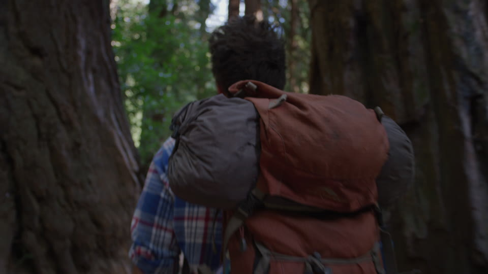 Get 5K premium stock footage video clip - Hiker In The Woods - shot on RED Camera. Available immediately in RED R3D format. Choose from a wide range of footage collections with clips that belong together. One simple license for any use. New collections added weekly. ID 1230. Download footage now!