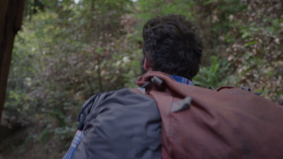 Get 5K premium stock footage video clip - Hiker In The Woods - shot on RED Camera. Available immediately in RED R3D format. Choose from a wide range of footage collections with clips that belong together. One simple license for any use. New collections added weekly. ID 1231. Download footage now!