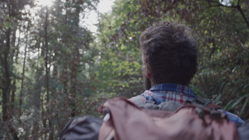 Get 5K premium stock footage video clip - Hiker In The Woods - shot on RED Camera. Available immediately in RED R3D format. Choose from a wide range of footage collections with clips that belong together. One simple license for any use. New collections added weekly. ID 1232. Download footage now!