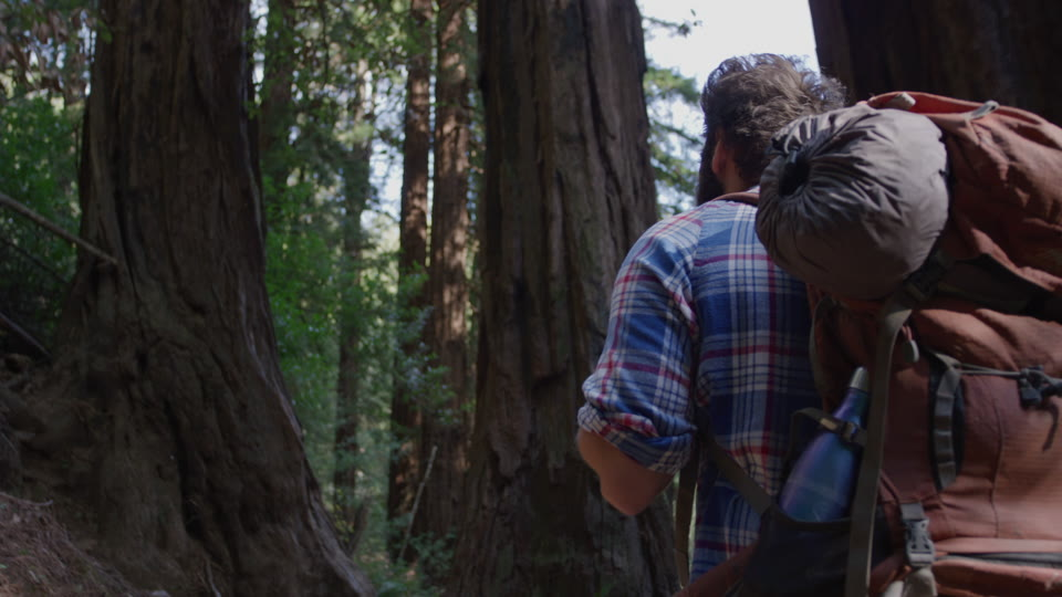 Get 5K premium stock footage video clip - Hiker In The Woods - shot on RED Camera. Available immediately in RED R3D format. Choose from a wide range of footage collections with clips that belong together. One simple license for any use. New collections added weekly. ID 1233. Download footage now!