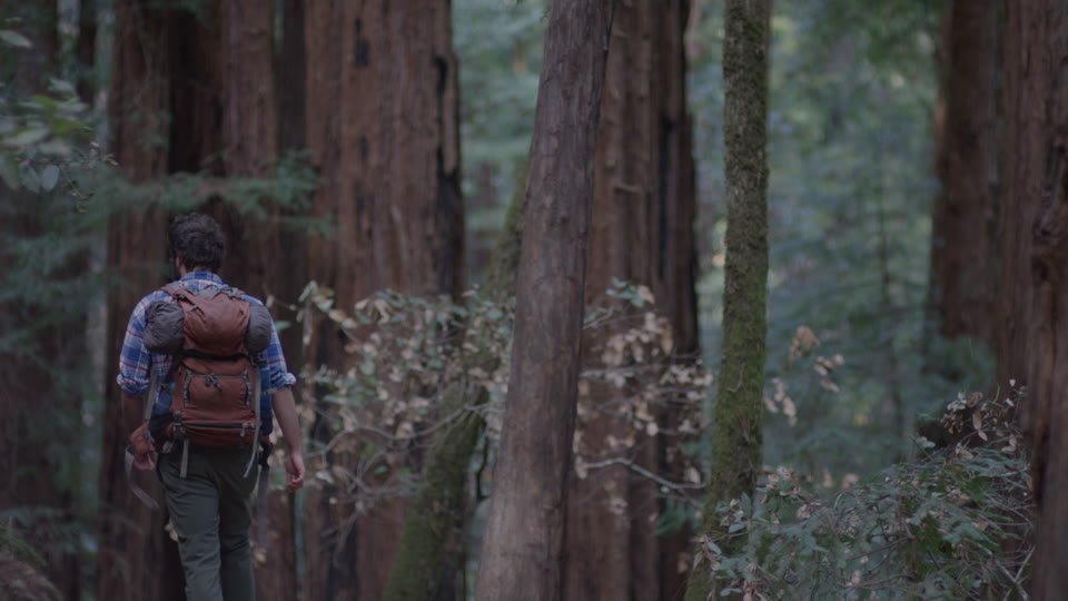 Get 5K premium stock footage video clip - Hiker In The Woods - shot on RED Camera. Available immediately in RED R3D format. Choose from a wide range of footage collections with clips that belong together. One simple license for any use. New collections added weekly. ID 1254. Download footage now!