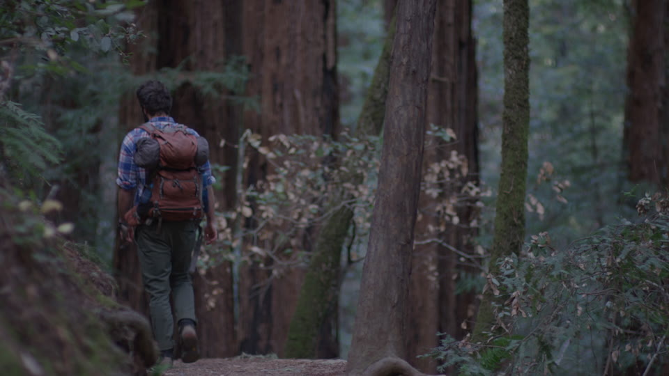 Get 5K premium stock footage video clip - Hiker In The Woods - shot on RED Camera. Available immediately in RED R3D format. Choose from a wide range of footage collections with clips that belong together. One simple license for any use. New collections added weekly. ID 1256. Download footage now!