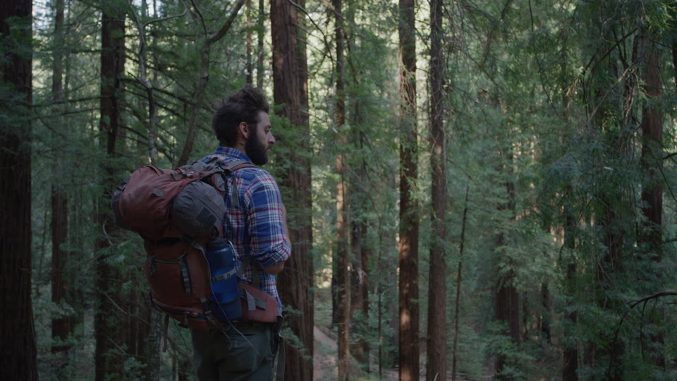 Get 5K premium stock footage video clip - Hiker In The Woods - shot on RED Camera. Available immediately in RED R3D format. Choose from a wide range of footage collections with clips that belong together. One simple license for any use. New collections added weekly. ID 1258. Download footage now!