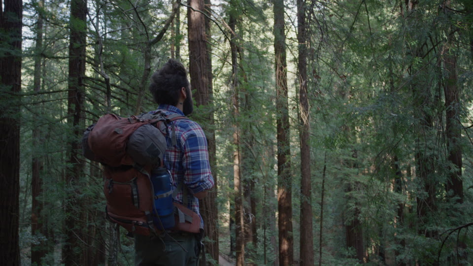 Get 5K premium stock footage video clip - Hiker In The Woods - shot on RED Camera. Available immediately in RED R3D format. Choose from a wide range of footage collections with clips that belong together. One simple license for any use. New collections added weekly. ID 1259. Download footage now!