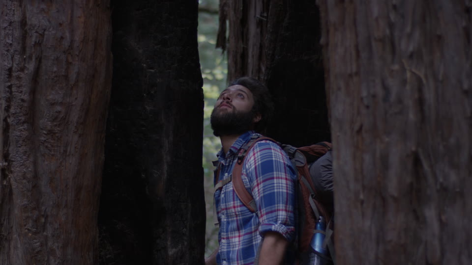 Get 5K premium stock footage video clip - Hiker In The Woods - shot on RED Camera. Available immediately in RED R3D format. Choose from a wide range of footage collections with clips that belong together. One simple license for any use. New collections added weekly. ID 1266. Download footage now!