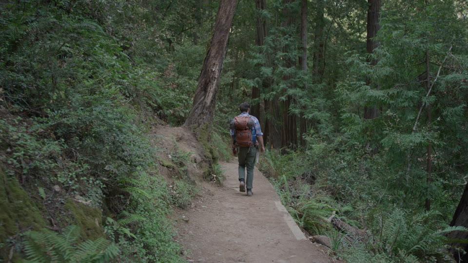 Hiker In The Woods