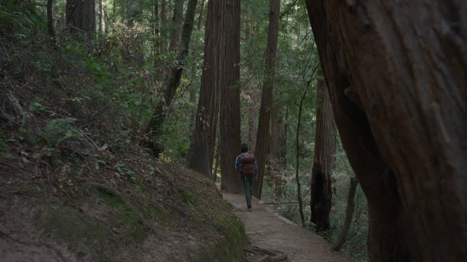 Get 5K premium stock footage video clip - Hiker In The Woods - shot on RED Camera. Available immediately in RED R3D format. Choose from a wide range of footage collections with clips that belong together. One simple license for any use. New collections added weekly. ID 1274. Download footage now!