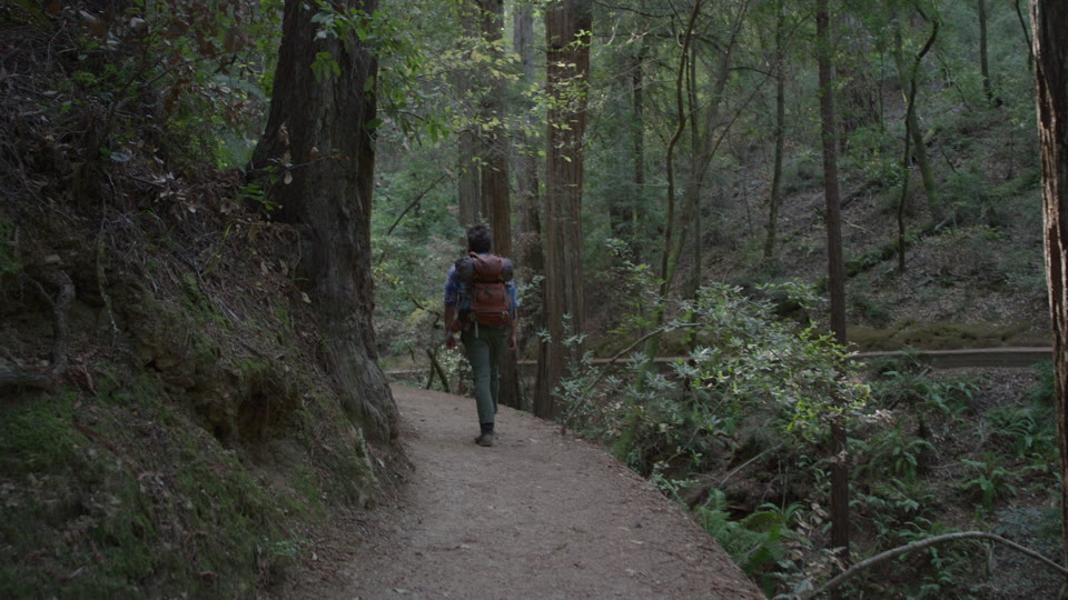 Get 5K premium stock footage video clip - Hiker In The Woods - shot on RED Camera. Available immediately in RED R3D format. Choose from a wide range of footage collections with clips that belong together. One simple license for any use. New collections added weekly. ID 1275. Download footage now!