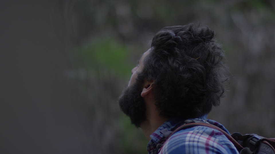 Get 5K premium stock footage video clip - Hiker In The Woods - shot on RED Camera. Available immediately in RED R3D format. Choose from a wide range of footage collections with clips that belong together. One simple license for any use. New collections added weekly. ID 1280. Download footage now!