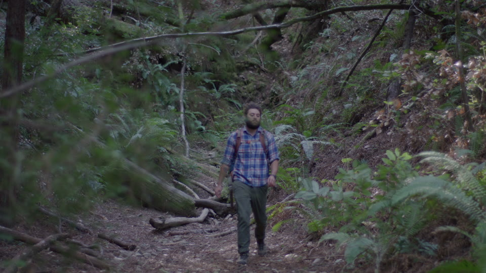 Get 5K premium stock footage video clip - Hiker In The Woods - shot on RED Camera. Available immediately in RED R3D format. Choose from a wide range of footage collections with clips that belong together. One simple license for any use. New collections added weekly. ID 1283. Download footage now!