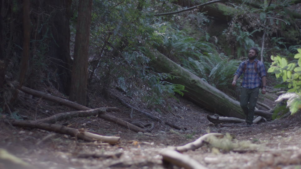 Get 5K premium stock footage video clip - Hiker In The Woods - shot on RED Camera. Available immediately in RED R3D format. Choose from a wide range of footage collections with clips that belong together. One simple license for any use. New collections added weekly. ID 1287. Download footage now!