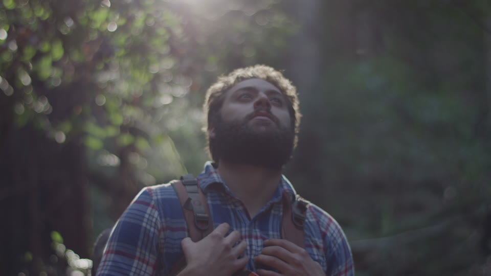 Get 5K premium stock footage video clip - Hiker In The Woods - shot on RED Camera. Available immediately in RED R3D format. Choose from a wide range of footage collections with clips that belong together. One simple license for any use. New collections added weekly. ID 1290. Download footage now!