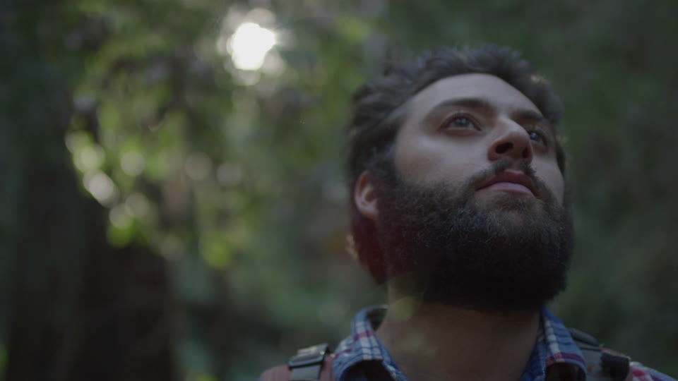 Get 5K premium stock footage video clip - Hiker In The Woods - shot on RED Camera. Available immediately in RED R3D format. Choose from a wide range of footage collections with clips that belong together. One simple license for any use. New collections added weekly. ID 1292. Download footage now!