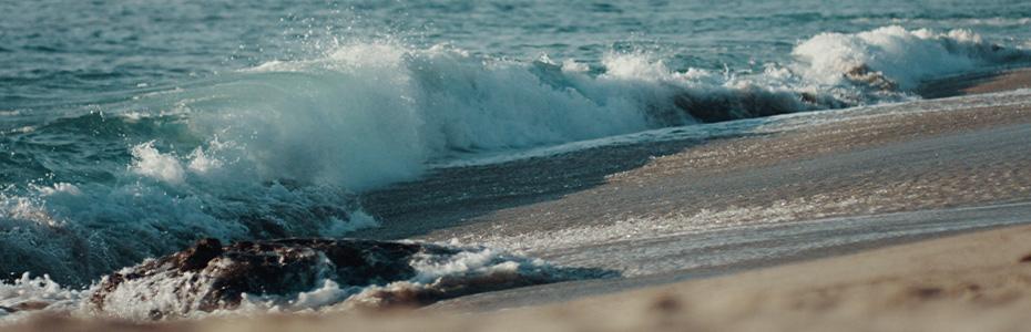 Laguna Beach: The Tranquility Amidst The Clamor of Waves