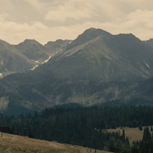 8K premium royalty-free stock footage shot on RED Camera, instantly available in RED R3D format. License this collection of Tatra Mountain now!