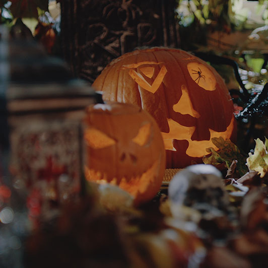 8K premium royalty-free stock footage shot on RED Camera, instantly available in RED R3D format. License this collection of Halloween now!